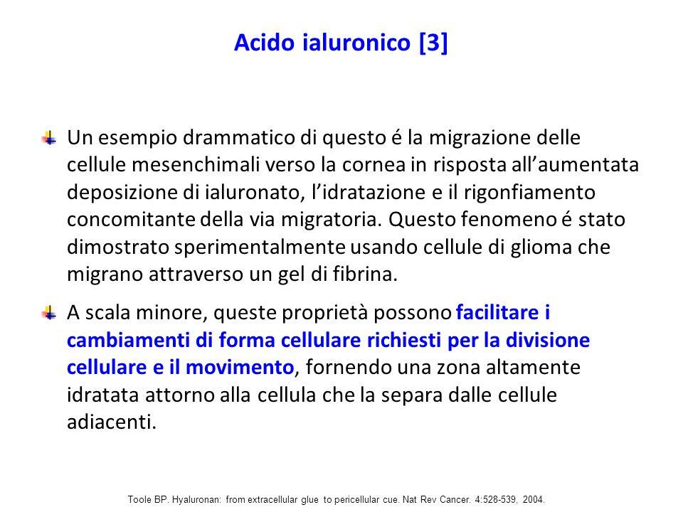 Acido ialuronico [3]